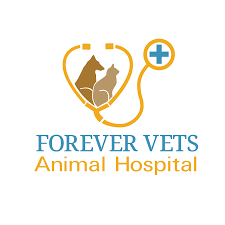 Forever Vets Animal Hospital